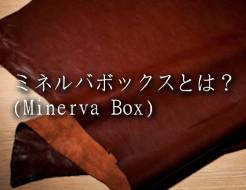 ミネルバボックスとは?財布に使われる革の特徴を解説します
