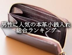 coin-case-ik