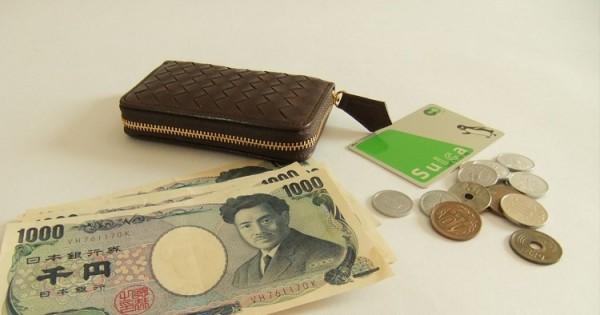 mattone-oliveto-coin-purse-13